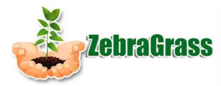 Gras Natural Zebragras